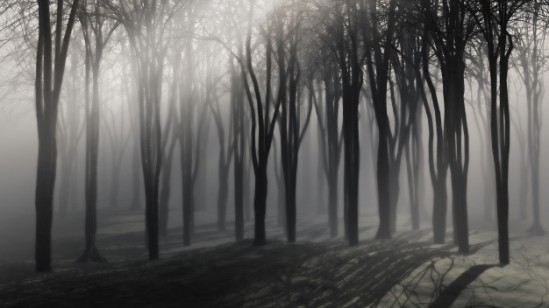 spooky-background-trees-foggy-night_1048-2901